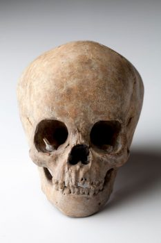 Offerendos - Patinated bronze skull